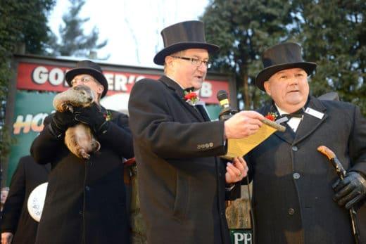 2 февраля в США, в городке Панксатони в штате Пенсильвания отмечается День Сурка (Groundhog Day), главным героем которого стал североамериканский лесной сурок (Marmota monax) Фил.