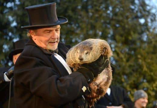 2 февраля в США, в городке Панксатони в штате Пенсильвания отмечается День Сурка (Groundhog Day), главным героем которого стал североамериканский лесной сурок (Marmota monax) Фил..