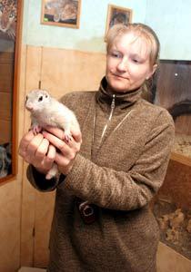В Иркутске в День сурка не дали поспать суслику