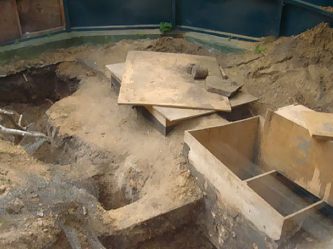 Семь сурков сбежали из Киевского зоопарка 2