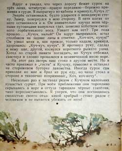 Кучук (детская книжка о сурках) 14