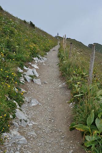 На Роше-де-Нэ много симпатичных маршрутов. Всё что вам нужно это просто следовать по тропинкам.