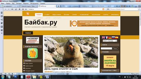 Bobak.ru – сайт для тех, кому байбак вполне себе домашнее животное